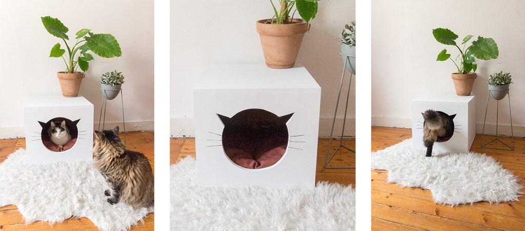 diy maison chat