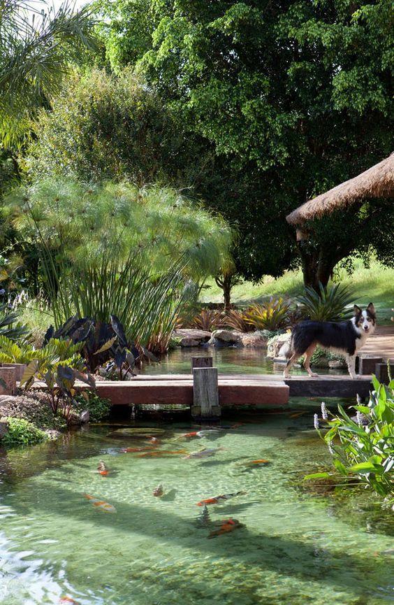 amenager-jardin-paysager- (6)