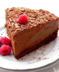 Gâteau Mousse Au Chocolat Tout à Fait Exquis Une Plume