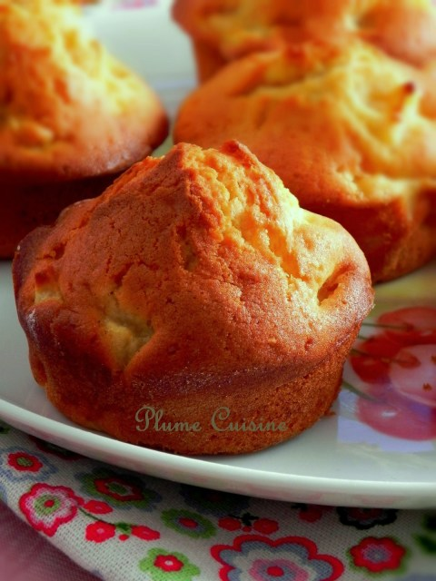 muffins pommes  (22)