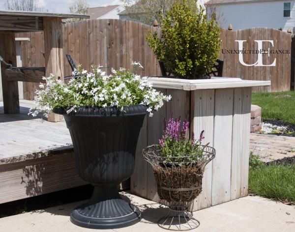 Easy Gardening via Unexpected Elegance (1 of 1)-2