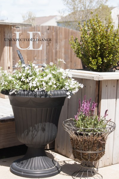 Easy Gardening via Unexpected Elegance (1 of 1)