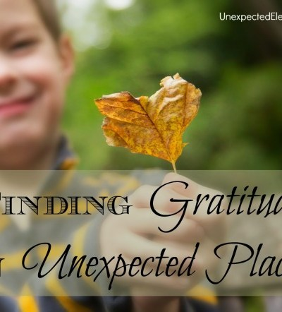 Finding Gratitude in Unexpected Places