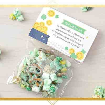 Cute St. Patrick's Day Crafts: Leprechaun Bait and Trap