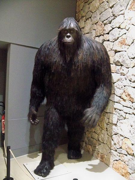 Bigfoot Exhibit Unexplained Mysteries Image Gallery