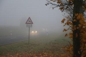 Im Herbst müssen sich Autofahrer auf Nebel und  Wildwechsel einstellen und ihre Fahrweise  dementsprechend anpassen. Foto: ARCD.