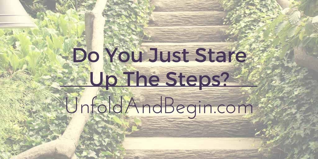 Do You Just Stare Up The Steps? Wednesday Whoa