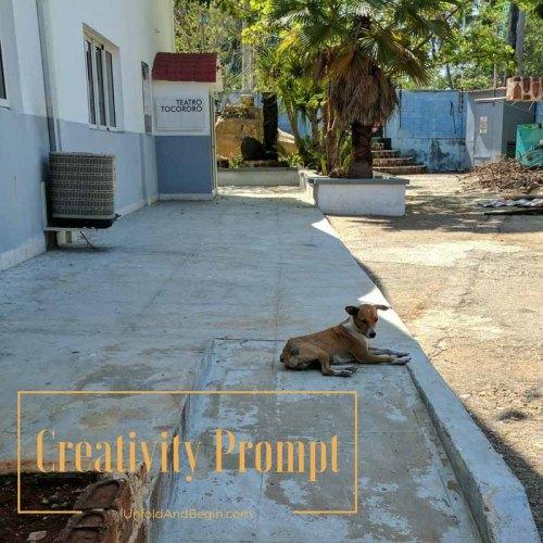 The life of a street dog creativity prompt on UnfoldAndBegin.com