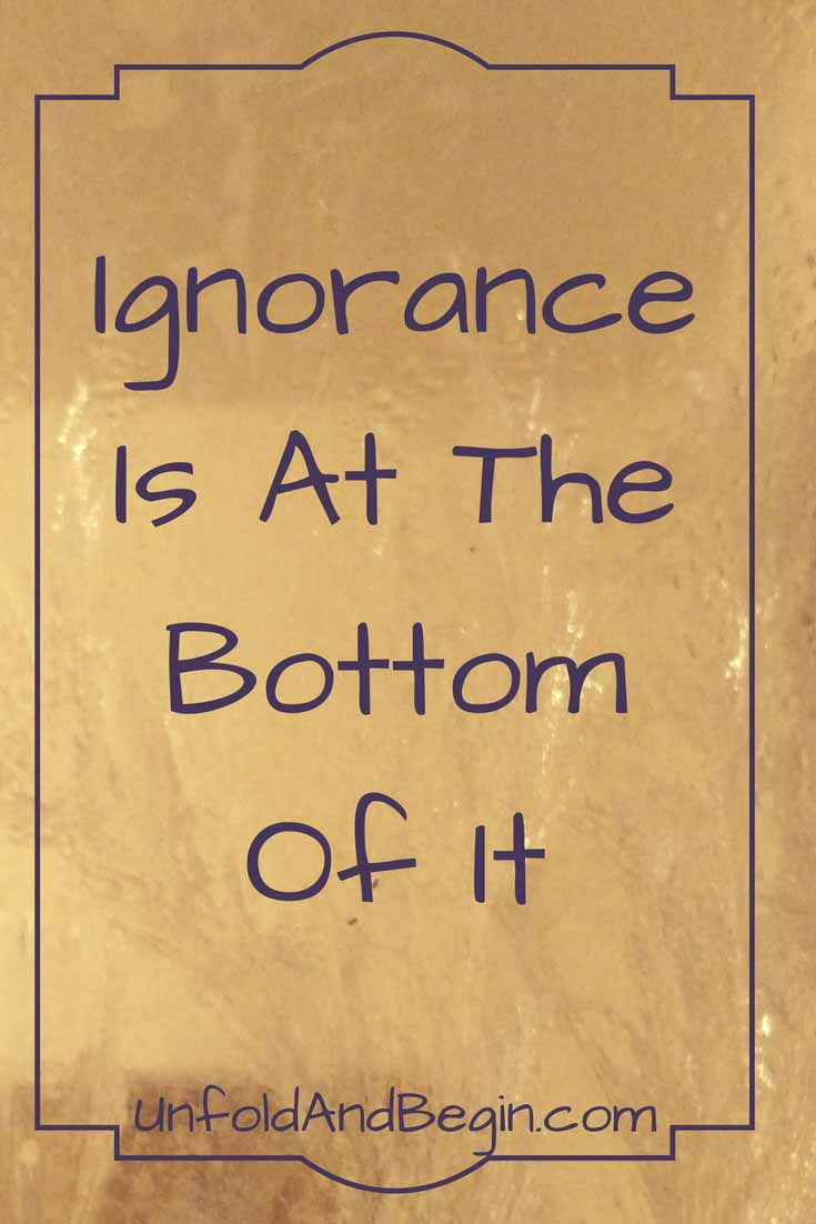 Ignorance is at the bottom of it.  If we are ignorant of other people, we may fear them. If we fear them, we blame them. If we blame them, we start to hate them.