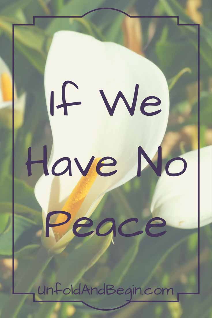 If we have no peace on International Day of Peace then learn how you can participate in activities to acknowledge this day on UnfoldAndBegin.com