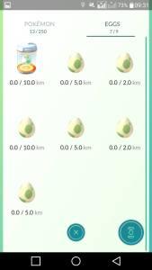 Pokemon Eggs