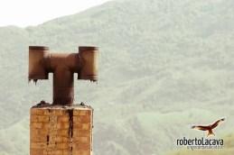 Castelgrande-Ugib-020510-0002