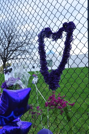 A purple scarf cleverly woven through the fence.
