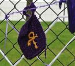 A Prince symbol potholder.