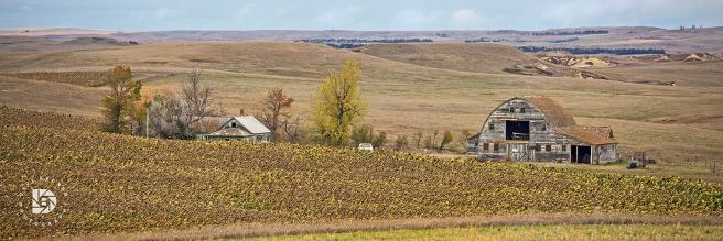 October 16: A nice setting for this past prairie farmstead in western North Dakota.