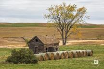October 16: Old farmhouse still standing.