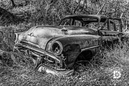 October 16: An old Plymouth buried in the trees and long forgotten.