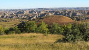 One of our roadless areas in the North Dakota Bad Lands.