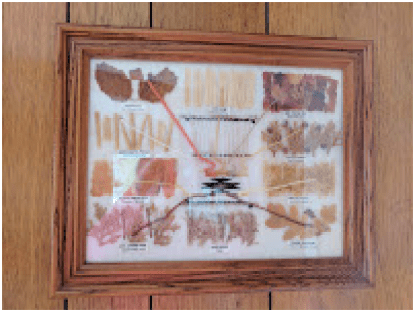Navajo art.