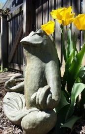 April 8: Your afternoon moment of zen with Zen Master Froggy.