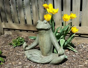 April 8: Zen master Froggy.