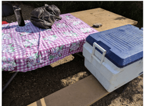 This tablecloth and cooler have been used at hundreds of campsites in the U.S. and Canada.