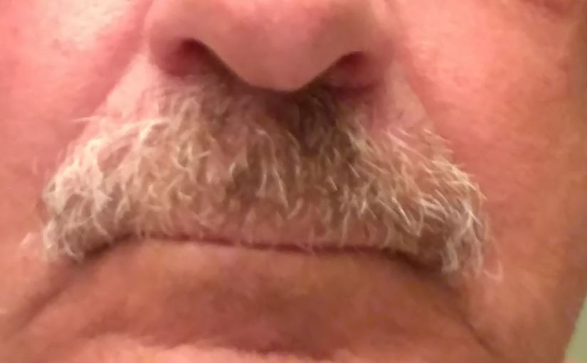 TERRY DULLUM: The Dullum File — Most Frequently Asked Questions (About My Mustache)