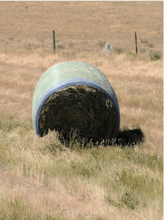 I can't quite get used to the turquoise plastic webbing that is used in many instances on hay bales these days.