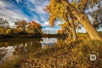"""""""Fall Scene Along the Banks of the The Red River"""": I liked this scene showing this path covered in the fall leaves, and the trees along the Red River in full color."""