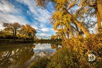 Fall colors along the Red River.