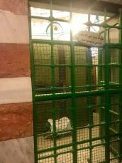 Abraham's tomb.