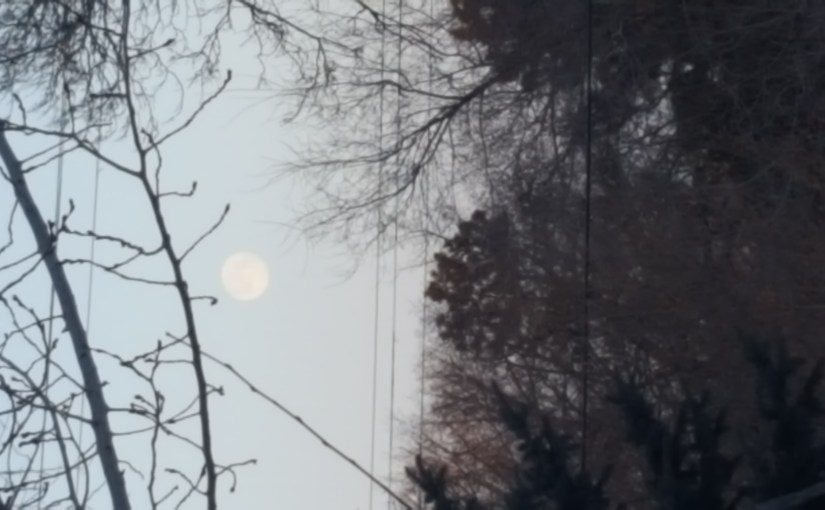 JIM FUGLIE: View From The Prairie — A Full Moon? Easter? April Fool's Day? Well, Kind Of