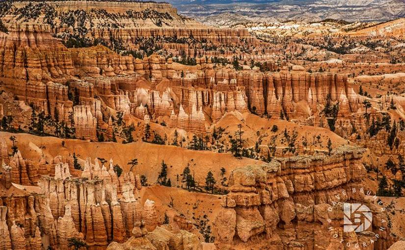 DAVE BRUNER: Photo Gallery — The Hoodoos Of Bryce Canyon