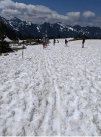 Skiers and snowboarders hike up the trail and then whiz down.