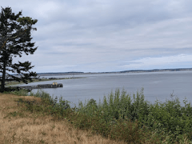 Salish Sea, Fort Warden. I have photographs my mother took from this very spot of my father's ship sailing to Korea.