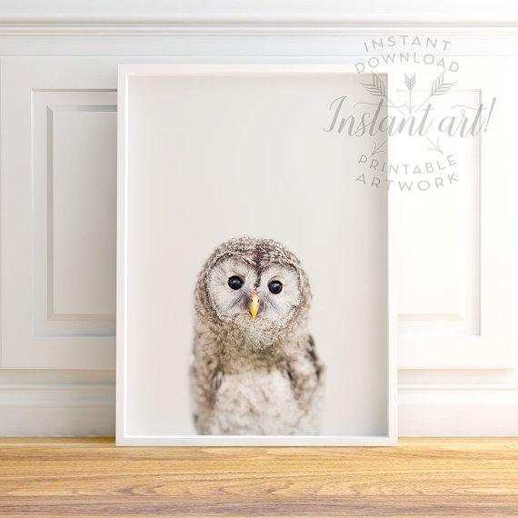 etsy-owl-print
