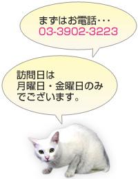 まずはお電話・・・ 訪問日は月曜日・金曜日のみでございます。