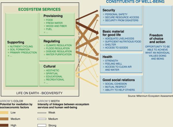 Millenium Assessment – Ecosystem Services