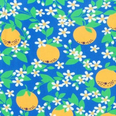 DUNS Sweden blue oranges ladies