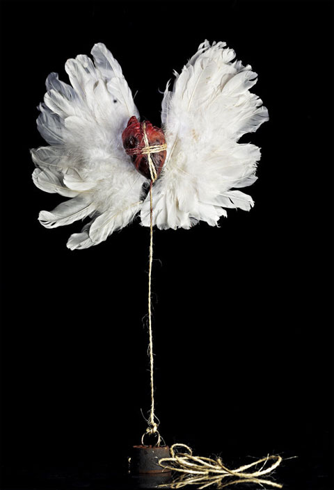 Béklyókkal lehorgonyzott szárnyas szív