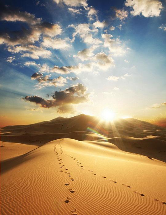Sivatagi naplemente.
