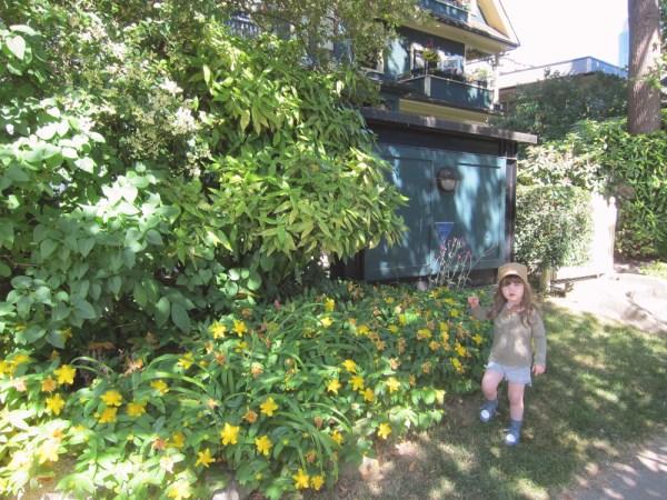 09gwenyellowflowers
