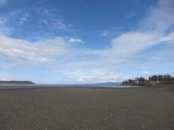 01 squelch beach