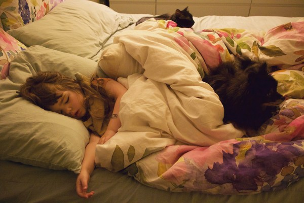 sleeping gwen