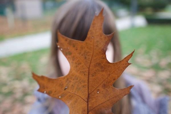 06-gwens-leaf