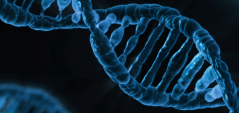 Biohacker Stores Encrypted Data in DNA