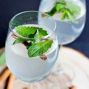 Persian Cinnamon Mint Refresher