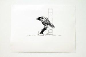 Sarah Fauguet & David Cousinard, Sans titre, 2011. Dessin. 77 x 57 cm. Production 40mcube. Photo Patrice Goasduff