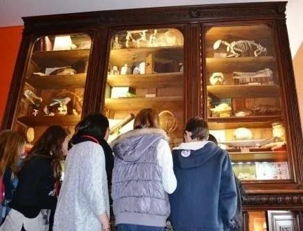 Le monde des collectionneurs Rennes