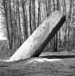 La-Tremblais-Sylvain-Brajeul-